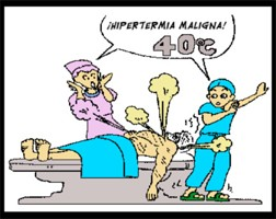 Nem sempre sabemos ao certo o que temos, por tanto, se tiver febre, procure o médico, pois o seu organismo esta pedindo ajuda.
