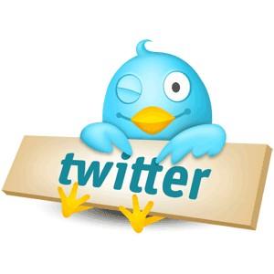 Como criar um Twitter em português