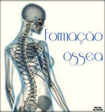 Tecido ósseoFormação óssea do corpo humano