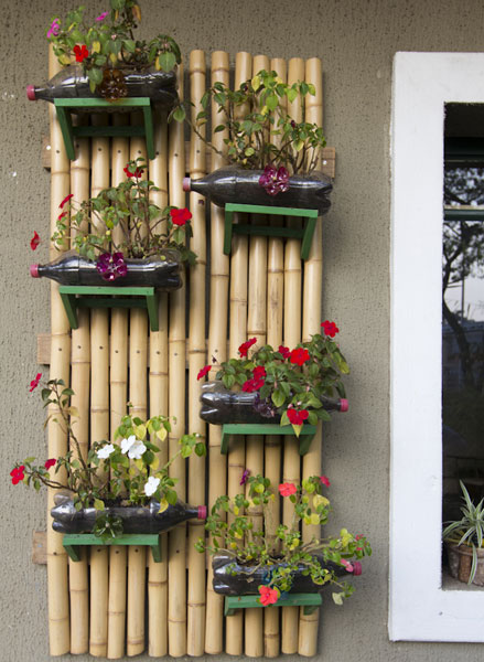 plantas para jardim vertical de garrafa pet:Plastic Bottle Vertical Garden