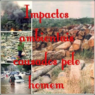 Impactos ambientais causados pelo homem