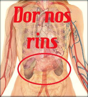 Dor nos rins: causas, sintomas, tratamento e prevenção.