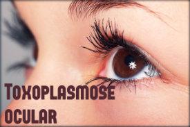 Toxoplasmose ocular: causas, sintomas, tratamento e prevenção.