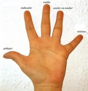 Nome dos dedos