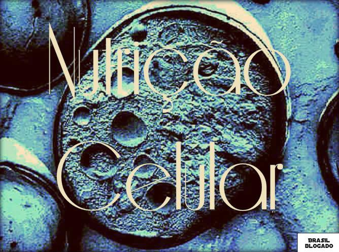 Parte responsável pela nutrição da célula