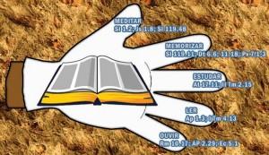 bíblia01