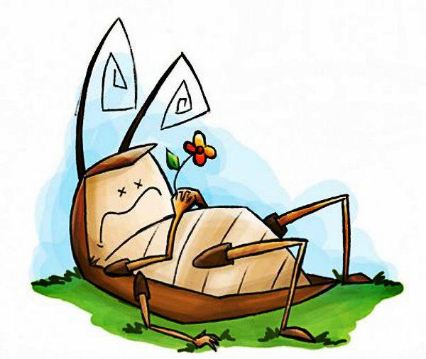 Não tenha medo das baratas, tenha medo delas prejudicarem a sua saúde.