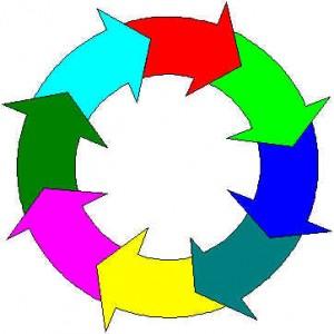 ciclo da toxoplasmose 300x300