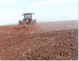 Máquina trabalhando no terreno