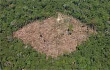 Desmatamento.