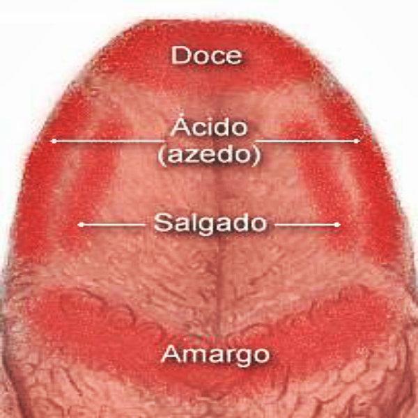 E preciso que haja uma escovação na língua, pois ela acarreta vários tipos de bactérias durante o dia.