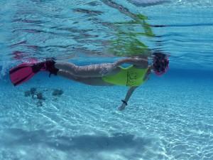 O mergulho pode ser feito tanto no raso como no  mar profundo.