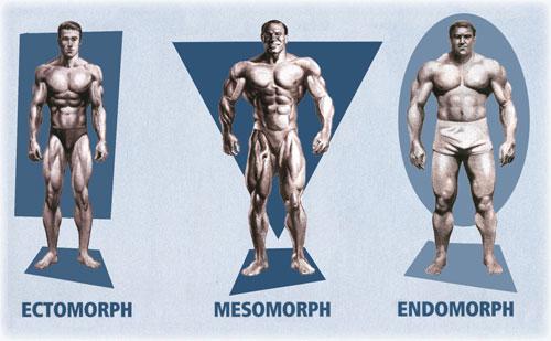 Biotipos- Foto Reprodução