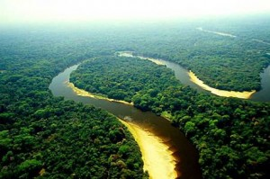 Estados onde se localiza o pantanal