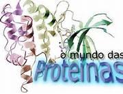 proteínas01