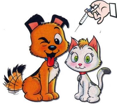 Não esqueça de vacinar seu animalzinho.