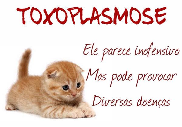 A toxoplasmose tem cura.